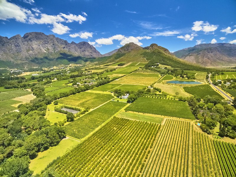Aerial view of the Cape Winelands